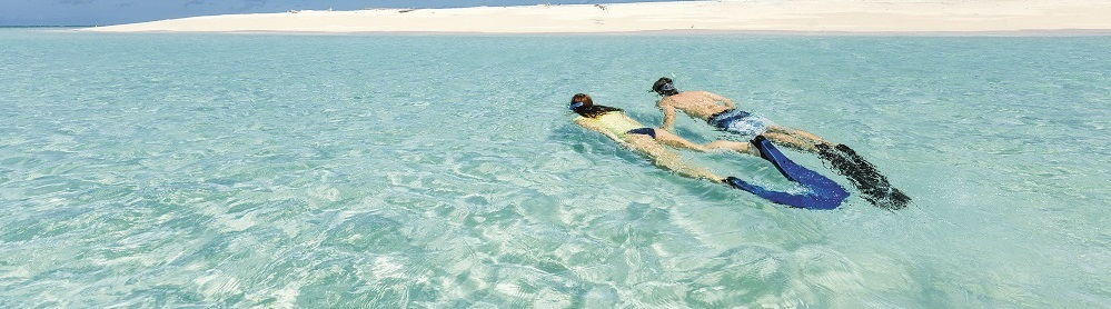 Snorkelling Tips for Beginners