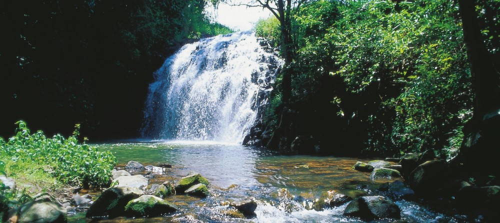Where Should You Swim in the Atherton Tablelands?