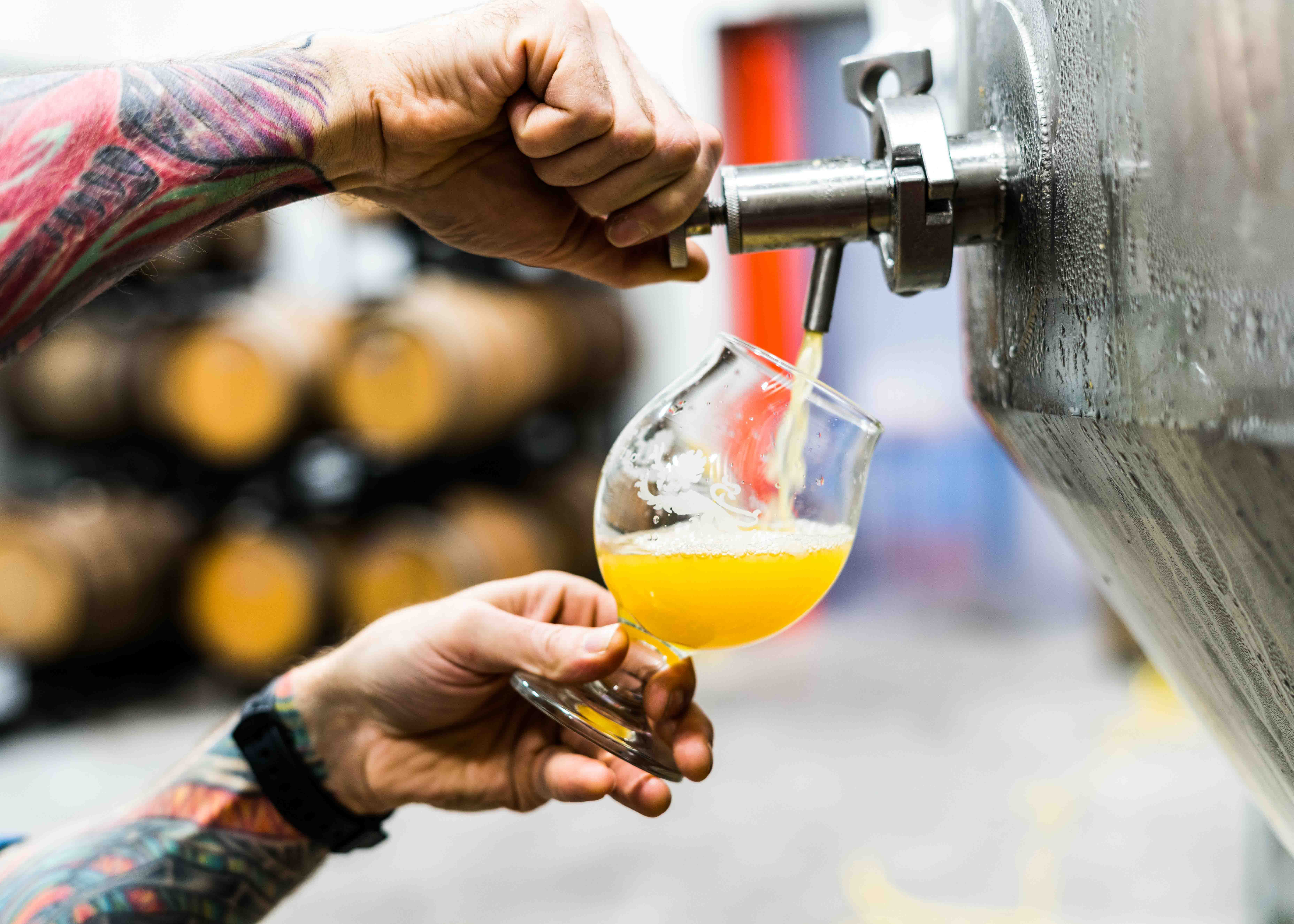 Craft Breweries in Cairns