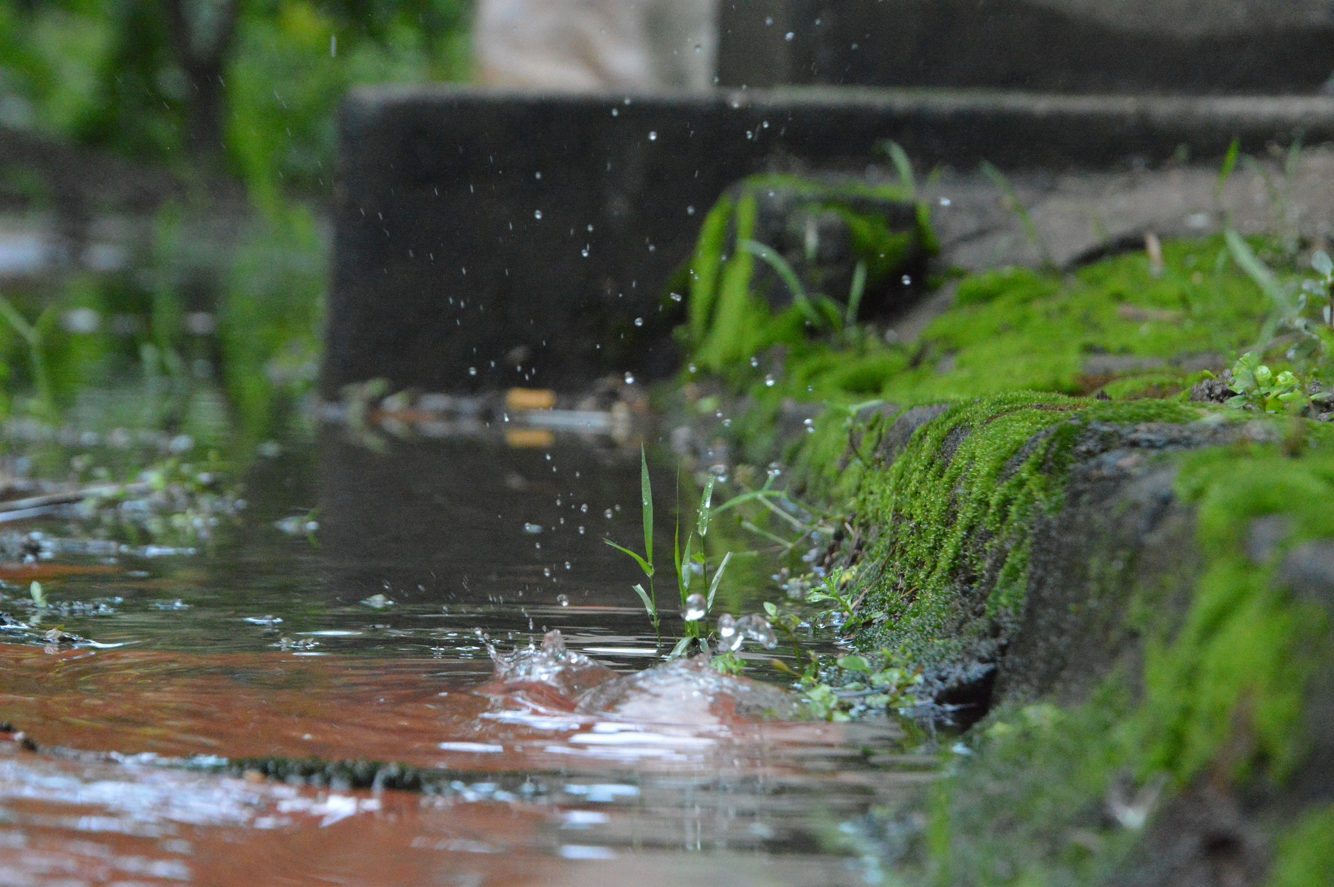 Making the most of your wet season visit to Cairns