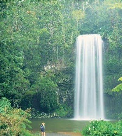 1 Day Atherton Tablelands Tour $109