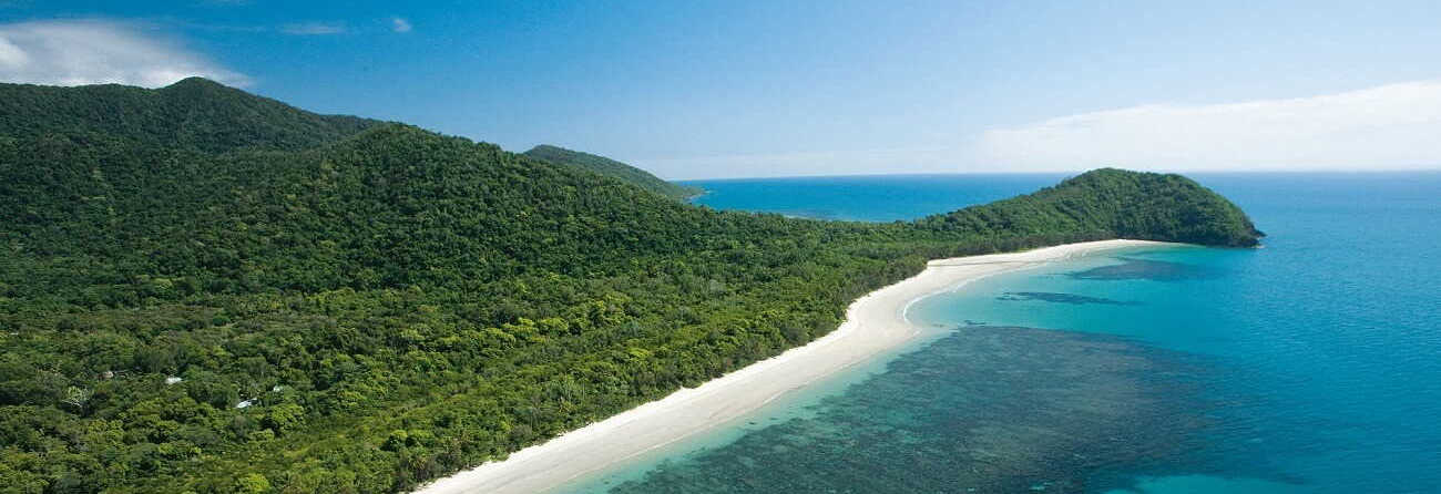 Cape Tribulation & Daintree Tours