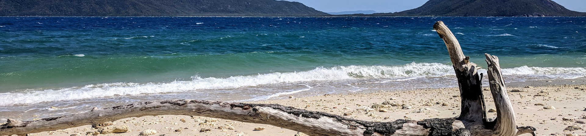 Is Fitzroy Island worth visiting?